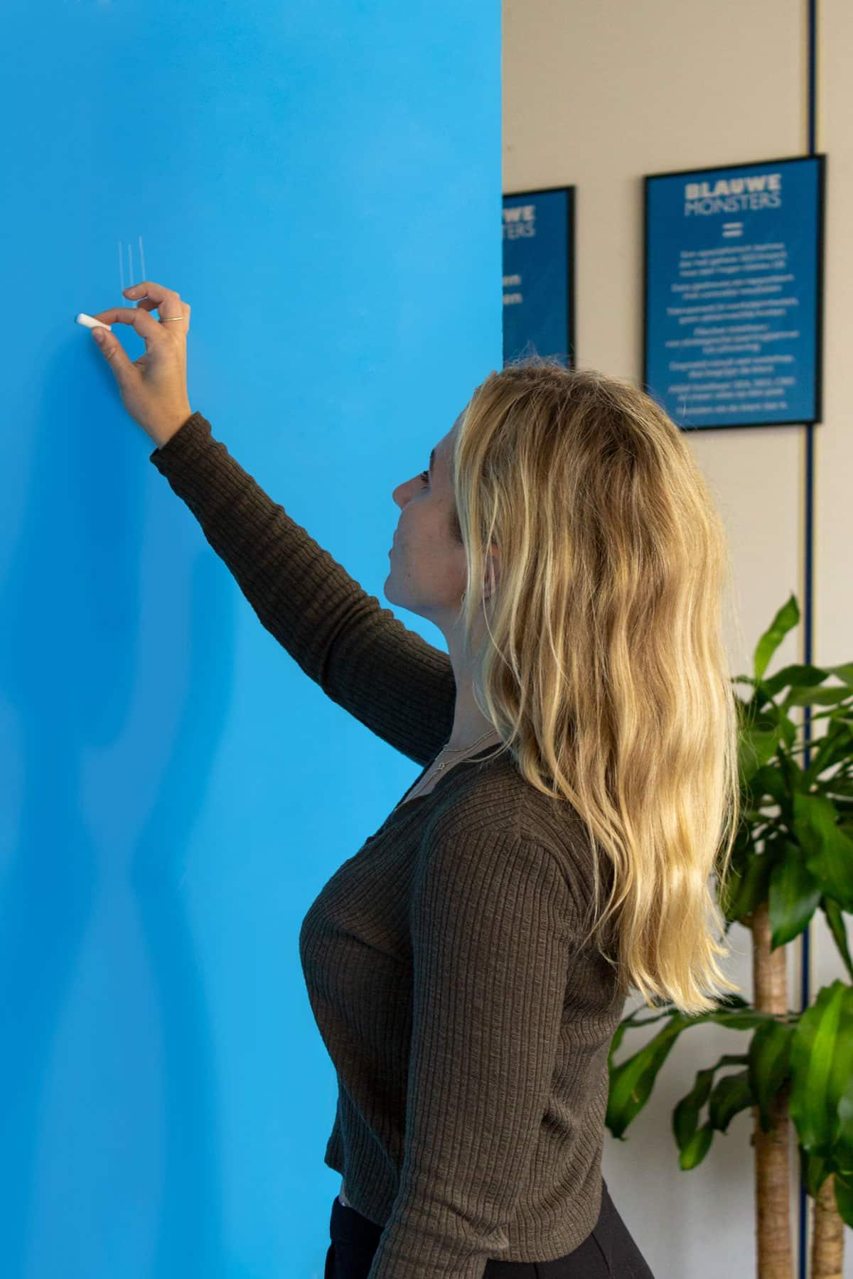 Online marketing bureau Hoofddorp Amsterdam digitale strategie - Blauwe Monsters